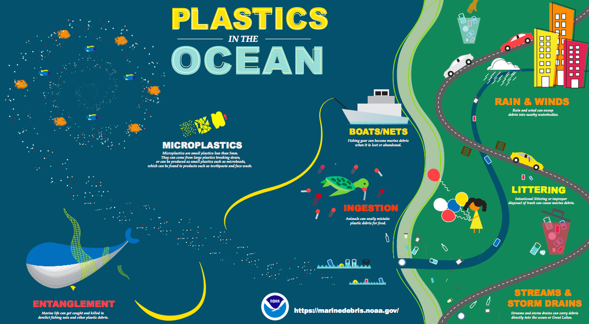 How the plastic gets into our oceans | Drawing United