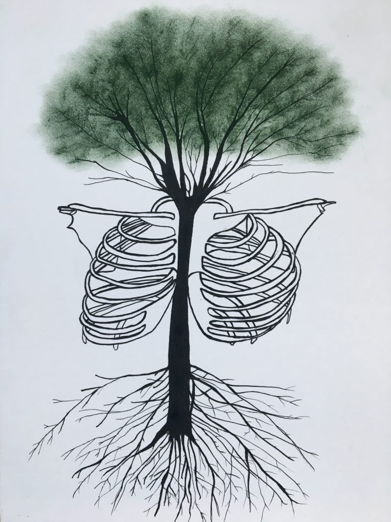The Rib Cage Tree | India ink and soft pastel | Original