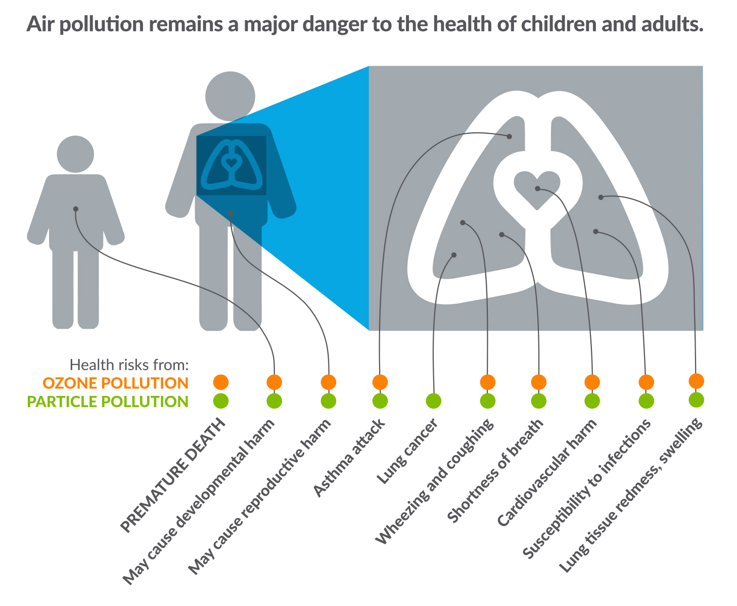 A chart showing the effects of air pollution on our health